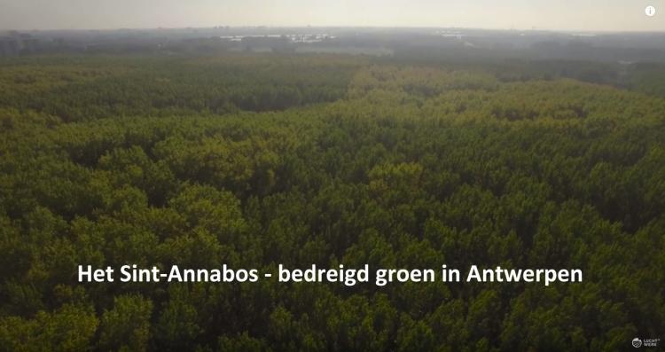 sintannabos_film